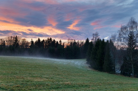 Sunset over the solitaire trees in the national park Bohemian Switzerland in the Czech Republic with the mist behind and green meadow in front, blue sky and forests