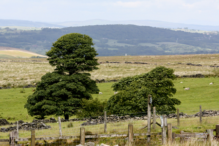 Views over the Lancashire moors with trees and hills