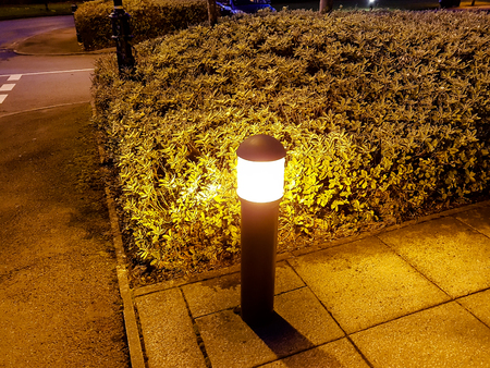 A lighting bollard next to a bush at dusk Stockfoto