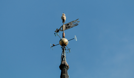 An owl sits on top of the church steeple weather vane with a blue sky background