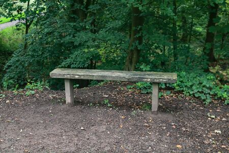 a small wooden narrow bench at the side of a path in the woods