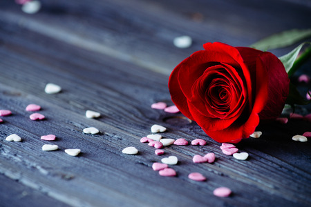 Red romantic rose and little sugar candy hearts on wooden table for delicate love concept  版權商用圖片