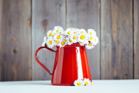 Lovely spring decorative arrangement with daisies flowerpot on rustic wooden wall  版權商用圖片