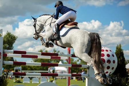 salto de valla: Deportes Ecuestres Foto de archivo