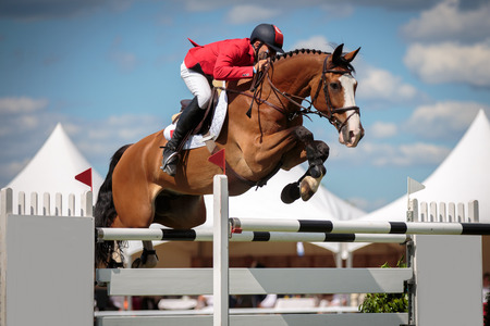 recreational sport: Equestrian Sports