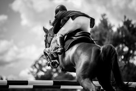 obstaculo: Deportes Ecuestres Foto de archivo