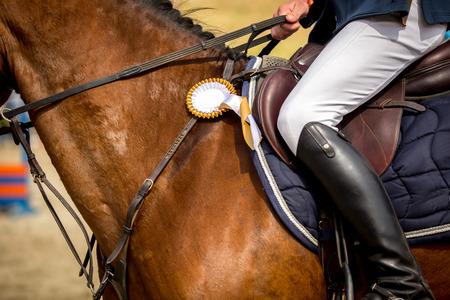 corse di cavalli: Sport Equestri