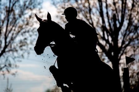 tied woman: Equestrian Sports
