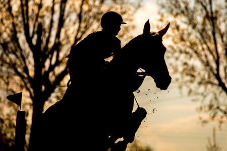 caballo negro: Deportes Ecuestres Foto de archivo