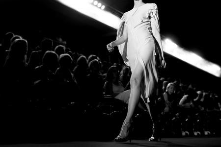Sfilata di moda Archivio Fotografico - 40350034