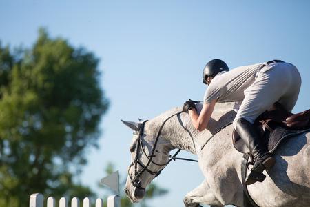 uomo a cavallo: Sport Equestri