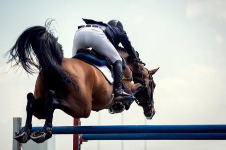 승마 스포츠, Horsejumping 이벤트