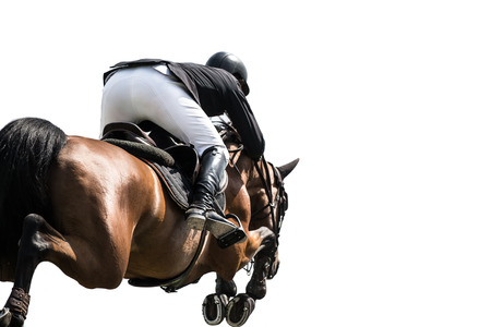 cut the competition: Horse Jumping, Equestrian Sports, Isolated on White Background