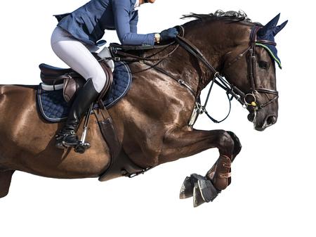 Sports équestres, Horse Jumping événement, isolé sur fond blanc Banque d'images - 83429413
