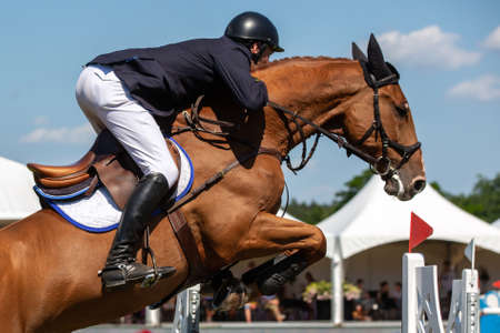 Horse Jumping, Equestrian Sports themed photo. Stock Photo