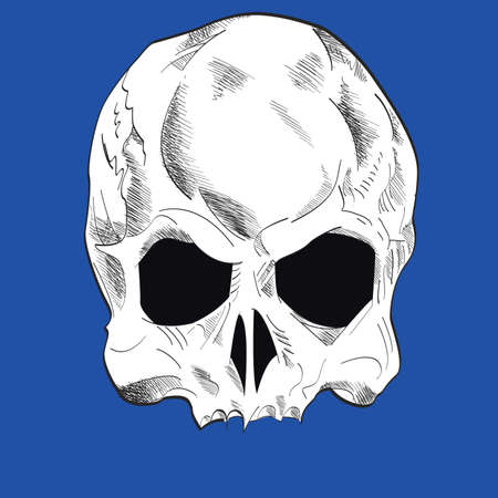 Skull vector drawing isolated on blue for t-shirts or posters