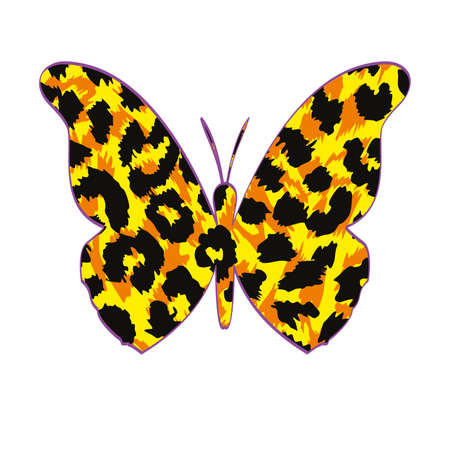 Vector illustration of animal print butterfly isolated on white. Natural design for shirt. 向量圖像