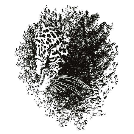 Image of a dark spot with the head of a leopard inside 矢量图像
