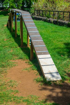 Agility circuit ramp for dogs with green grass and sunny day