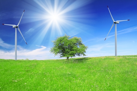 Field, tree and blue sky with wind turbines