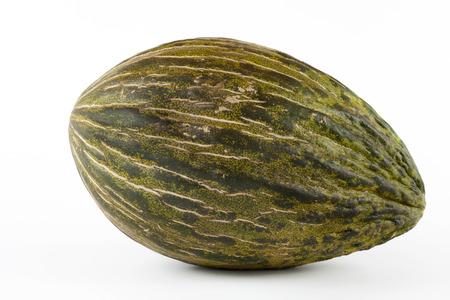 christmas frog: Whole single Piel de sapo melon on white background