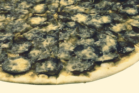 moldy: Moldy pizza on white background