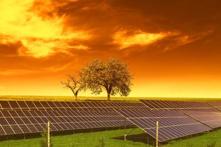 Zonne-energie panelen voor bomen en avondrood Stockfoto