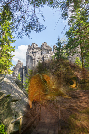 geologists: Eagle in rocks in the National park of Adrspach-Teplice Rocks - Czech Republic Stock Photo