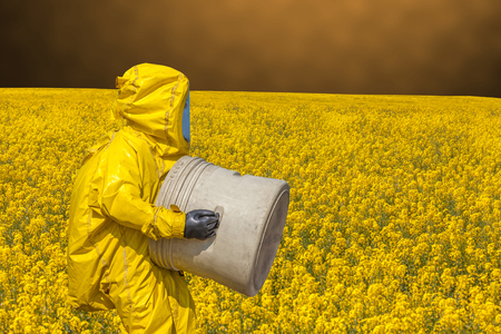 View of yellow rape field and men in protective hazmat suit Stock Photo