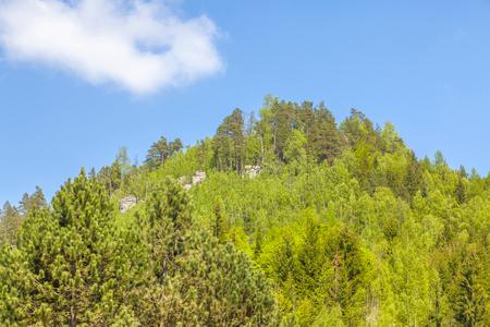 Rocks in the National park of Adrspach-Teplice Rocks - Czech Republic Stock Photo
