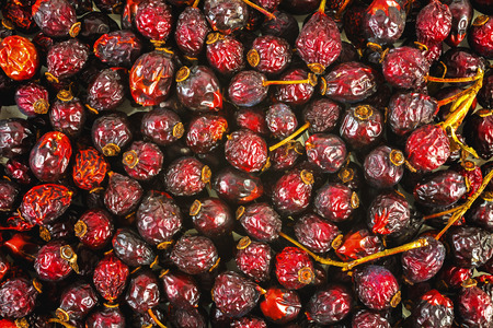 Dried red hips, natural background