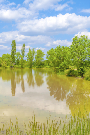 Spring pond landscape with blue sky and clouds