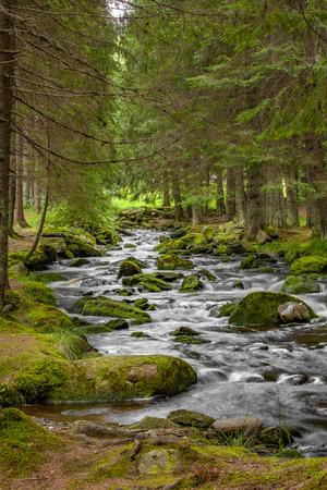 Waterfall on mountain stream in the National Park Sumava-Czech Republic