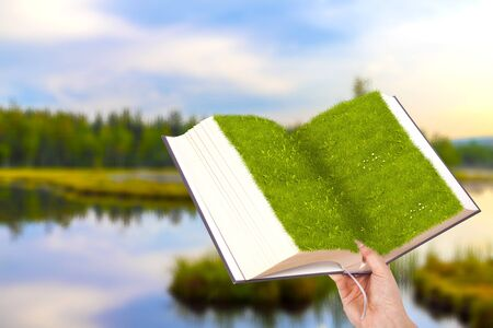 Book decoration from grass in hand by the lake.