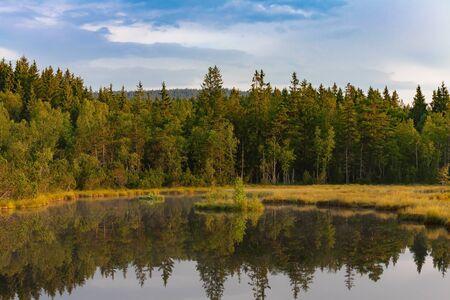 Devil`s Lake in the National park Sumava, Czech Republic