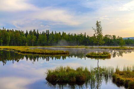 Mountain Lake Laka in Sumava national park in Czech republic.