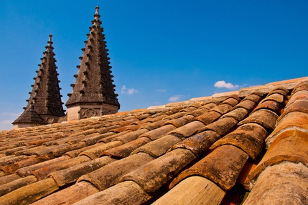 avignon: Old roof with little towers