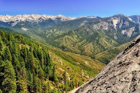 sequoia: Kings canyon summer landscape Stock Photo