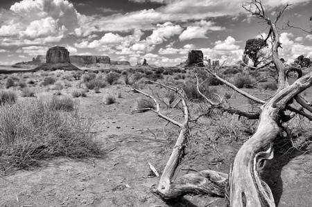 Monument valley monochrome landscape view photo