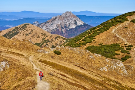 mala fatra: Slovak mountains trekking path and person in Mala Fatra Stock Photo