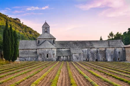 abbaye: Abbaye de Senanque in Provence before sunset