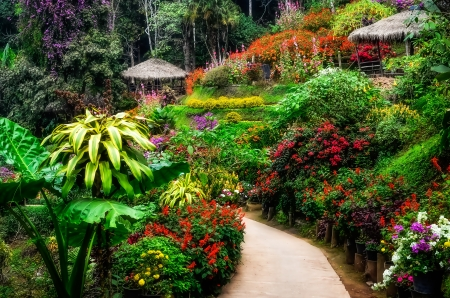 Landscaped colorful flower garden in blossom