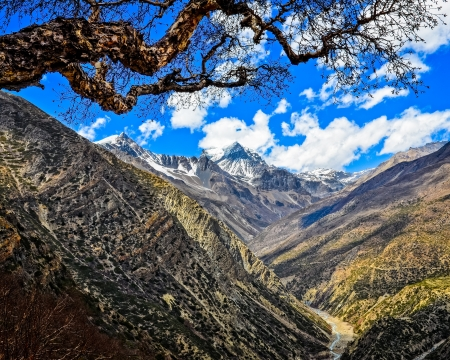himalaya: Himalayas mountains valley with white peaks and tree, Nepal Stock Photo