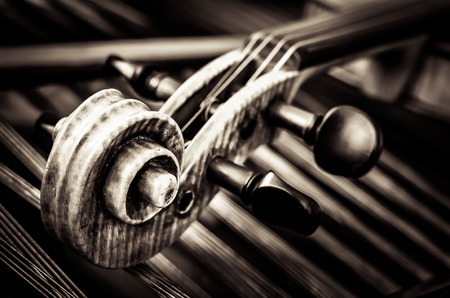 vertical image: Close-up detail of violin head with string background
