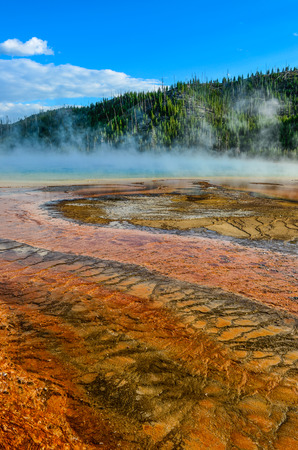 np: Detail view of Grand prismatic colorful hot spring, Yellowstone NP, Wyoming, USA
