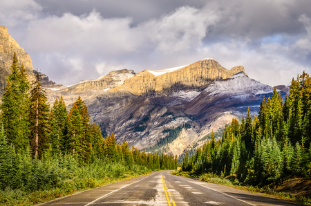 Scenic view of the road on Icefields parkway, Canadian Rockies, Jasper and Banff NP 免版税图像 - 31730367