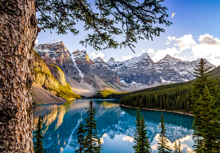 Landscape view of Morain lake and mountain range with tree in foreground, Alberta, Canada