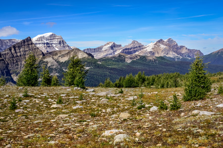 Scenic view of mountains in Banff national park near Egypt lake, Alberta, Canada photo