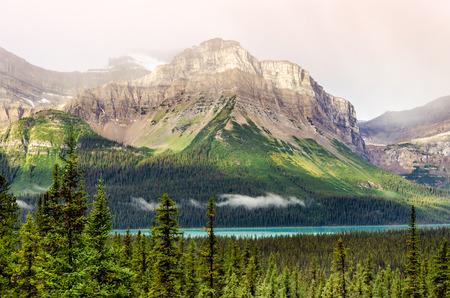 canadian rockies: Scenic mountain view near Icefields parkway, Canadian Rockies, Alberta, Canada