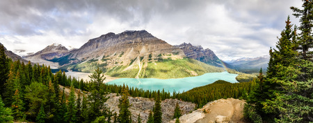 canadian rockies: Panoramic view of Peyto lake and Rocky mountains Alberta Canada Stock Photo